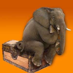 Does a heart attack feel like an elephant is sitting on your chest?